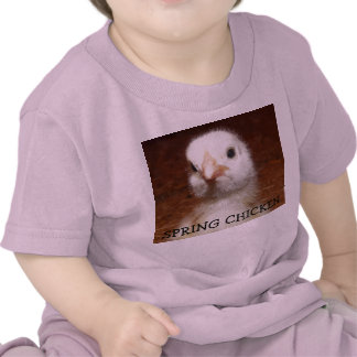 Spring Chicken - Baby Chick on Kids Tee