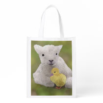 Spring children grocery bag