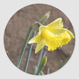 Spring! Classic Round Sticker