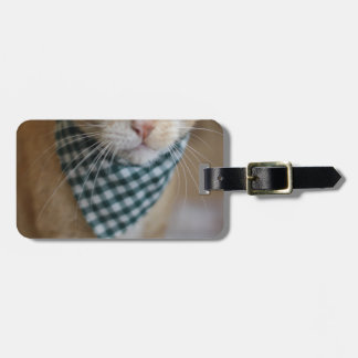 Spring Claude Tag For Luggage