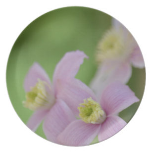 Spring Clematis Flowers Melamine Plate