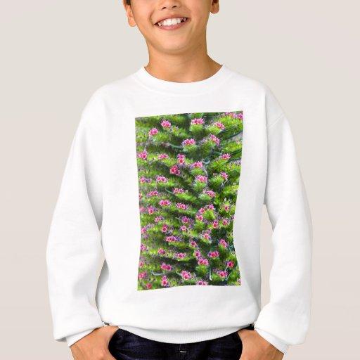 Spring Color Sweatshirt