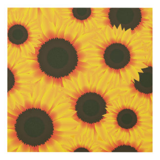 Spring colorful pattern sunfl panel wall art
