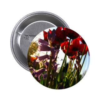 Spring Colors Button