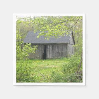 Spring Country Barn Napkin