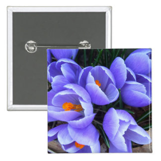 Spring Crocus CricketDiane Flowers Products Button