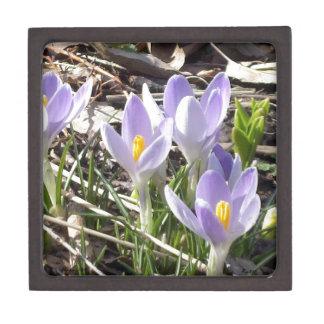 Spring Crocus' Premium Jewelry Box