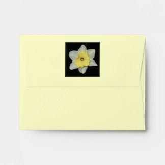 Spring Daffodil Envelopes