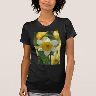 Spring Daffodil Tshirt