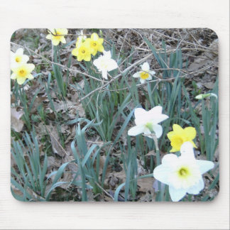Spring Daffodils Mouse Pad