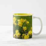 Spring Daffodils Mug