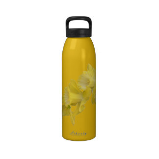 Spring Daffodils On Saffron Water Bottle