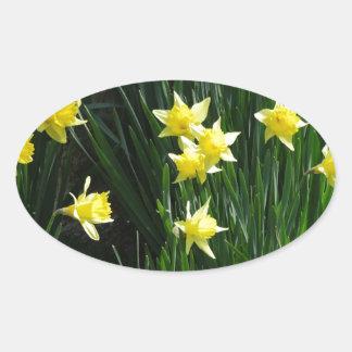 Spring Daffodils Oval Sticker
