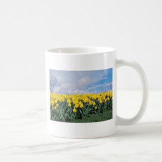 Spring daffodils Shrewsbury Shropshire England Coffee Mug