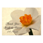 Spring Daffodils Wedding Favor Tags Large Business Cards (Pack Of 100)