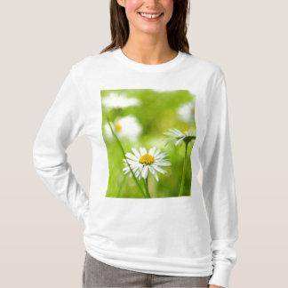 Spring daisies close up T-Shirt
