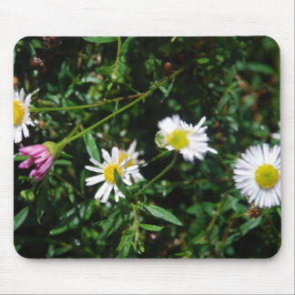 Spring Daisy Mousepad