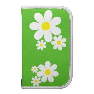 Spring Daisys rickshawfolio