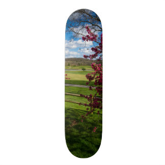 Spring Day In Rivercut Skateboard Deck