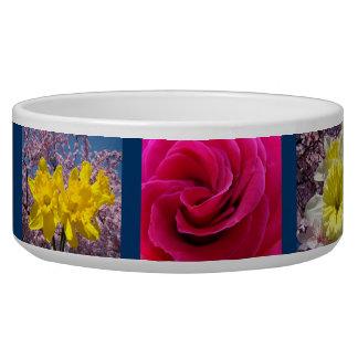 Spring Dog Food Bowl Daffodils Flower Floral Pets
