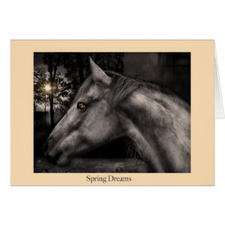 Spring Dreams Card