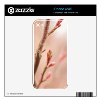 Spring dreams iPhone4/4S skin Skin For The iPhone 4S