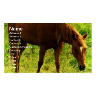 Spring Dreams, Sorrel Eating Grass Business Card Templates