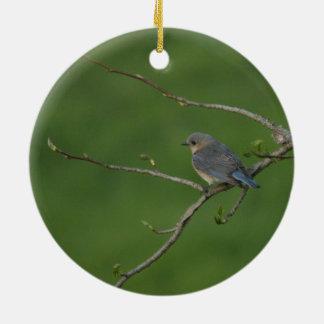Spring/Easter: Male Bluebird, Female Bluebird Ceramic Ornament