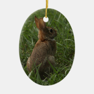 Spring/Easter ornament: rabbit and chick Ceramic Ornament