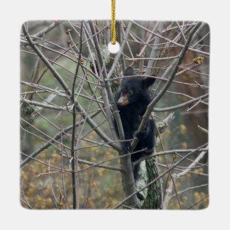 Spring/Easter: Twin fawns nursing, black bear cub Ceramic Ornament