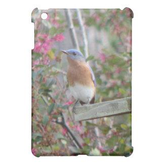 Spring Eastern Bluebirds iPad Mini Covers
