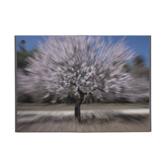 Spring Explosion iPad Mini Cover