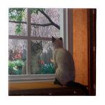 """Spring Fever Ceramic Tile<br><div class=""""desc"""">Meow</div>"""