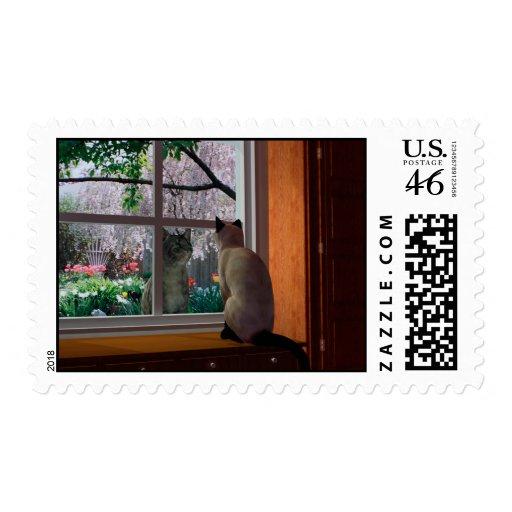 Spring Fever Stamps