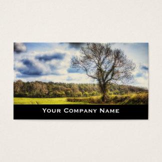 Spring Fields Landscape Business Cards