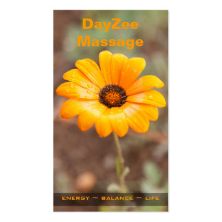 Spring Flash African Daisy Photo Appointment Business Card