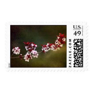 Spring Fling Stamp