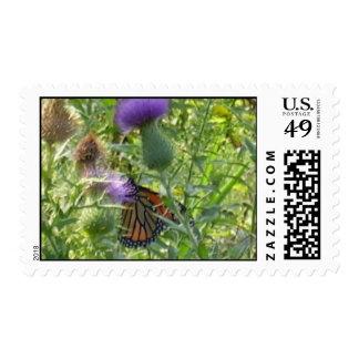 Spring fling postage stamp