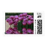 Spring flood (purple) postage