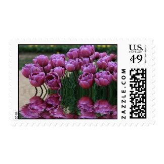 Spring flood (purple) stamp