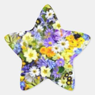 Spring Floral Color Burst Collage Star Sticker