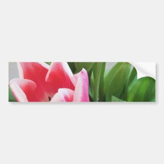 Spring Flower Bouquet Tulips, Floral, Nature Bumper Sticker