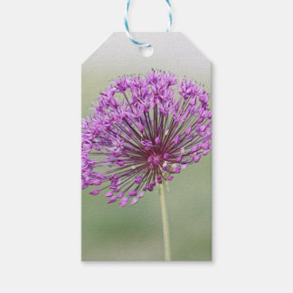 Spring flower photo gift tags