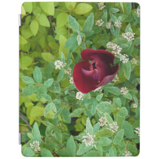 spring flowering iPad smart cover