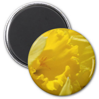 Spring flowers 2 inch round magnet