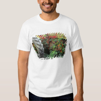 Spring flowers adorn an old tractor. T-Shirt