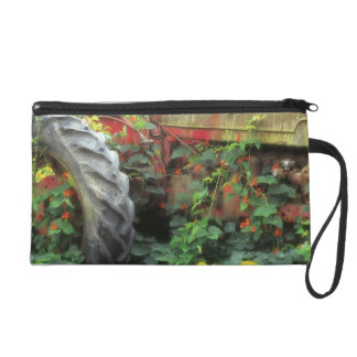 Spring flowers adorn an old tractor. wristlet