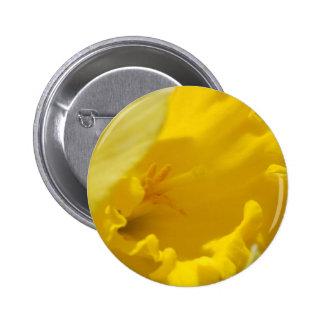 Spring flowers pinback button