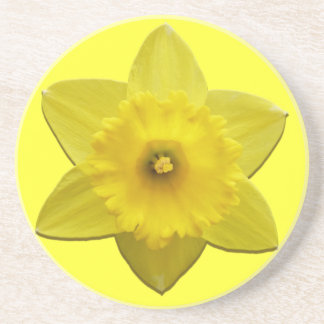 Spring Flowers Coaster Daffoldil Flowers Coaster