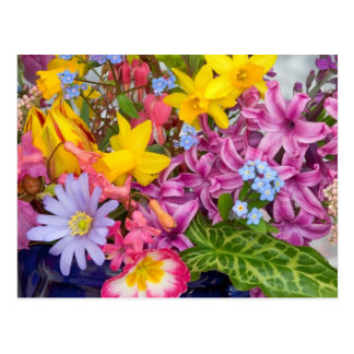 SPRING FLOWERS COLORFUL ASSORTMENT NATURE BEAUTY POSTCARD
